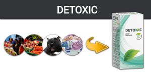 Detoxic – Megszabadíthatja a szervezetét a nemkívánatos kórokozóktól?