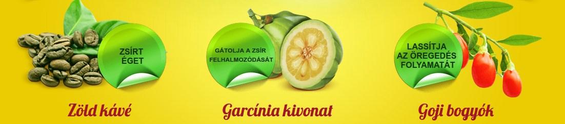 zöld kávé garcinia goji bogyó