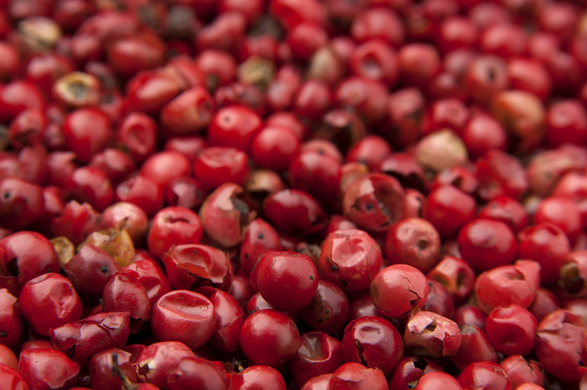 goji berrie
