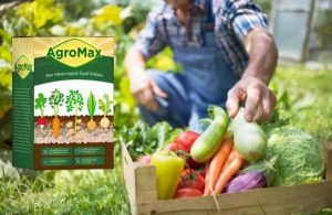 AgroMax – Egy szerves Szerves növekedés javítása formula a Ízletesebb gyümölcsök és zöldségek!