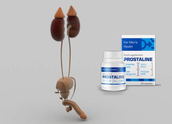 ProstaLine ár