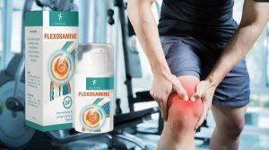 Flexosamine felülvizsgálat – Javítsa az ízületek rugalmasságát és legyen aktívabb 2021 -ben!